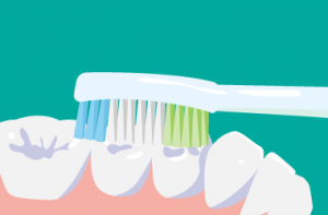 電動歯ブラシ 歯の噛み合わせ部分の磨き方