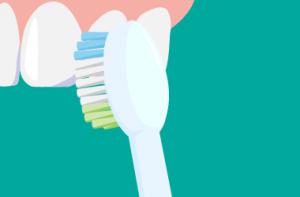 電動歯ブラシ 上の前歯表面の磨き方