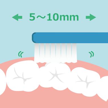 歯の表面は、歯1~2本を小刻みに磨く