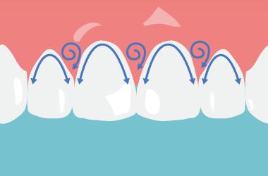 歯と歯茎の境目をなぞるように磨く