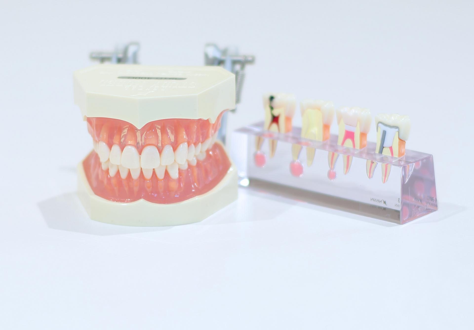 良い歯医者みつけた!三郷駅の評判が良いおすすめ歯医者4選