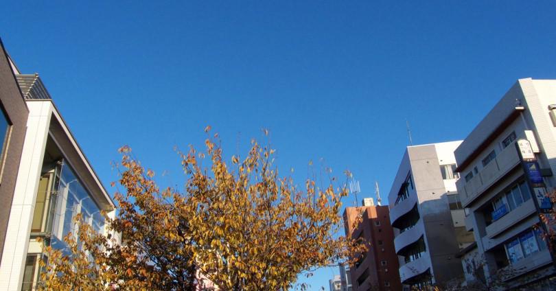桜新町駅メイン画像