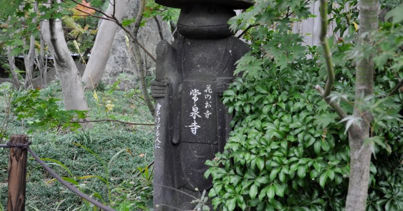 常泉寺 高座渋谷