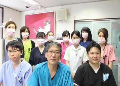 小島歯科 スタッフ