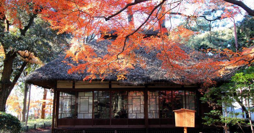 八幡山駅 アイキャッチ