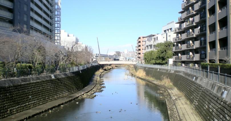 星川駅 アイキャッチ