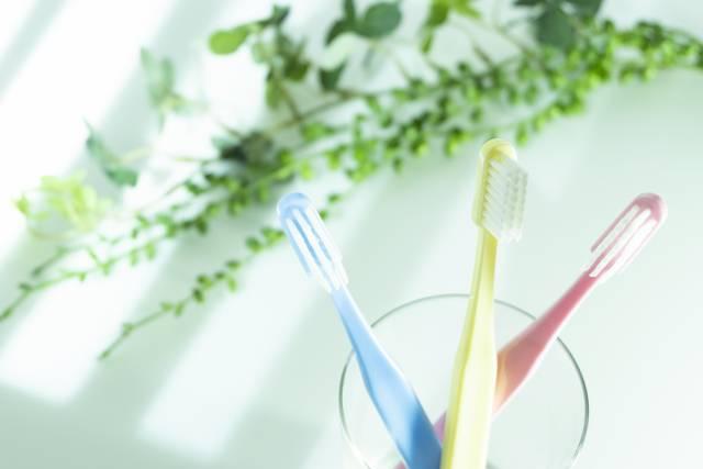 【親知らず】稲毛海岸駅近くにある歯医者5院のおすすめポイント