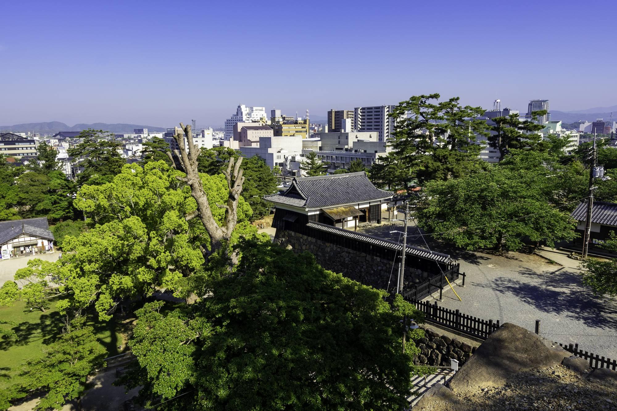 【2院】松江市の歯医者さん探し!おすすめポイントや特徴も紹介