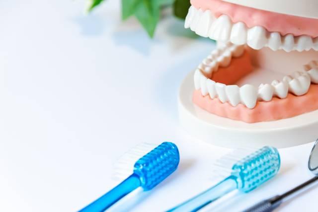 痛い 噛む 歯 を もの が 固い と