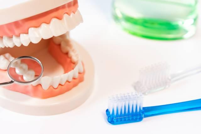 歯医者選びで悩んでる?塩釜口の歯医者4院、おすすめポイントも紹介